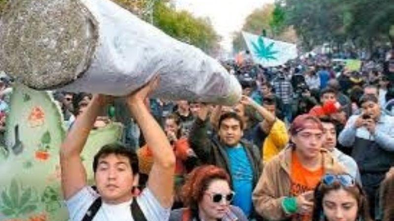 costa-rica-lidera-movimiento-centroamericano-a-favor-del-uso-medicinal-e-industrial-de-la-marihuana